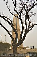 Winter tree and monument. Shanghai