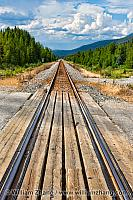 Canadian Pacific train tracks near Banff. Alberta, Canada