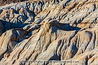 Waves of sandstone near Drumheller. Alberta