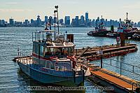 Fireboat and harbour tugs in North Vancouver. BC, Canada