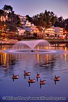 Fountain and geese at twilight at Lake Merrit. Oakland, CA