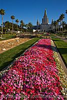 Flower beds line the road to the LDS temple. Oakland, CA