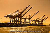 Waiting container cranes in golden twilight at port. Oakland, CA