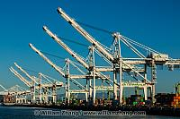 Port of Oakland container cranes line Middle Harbor. Oakland, CA