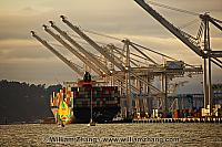 Sailboat passes container ship and cranes in port. Oakland, CA