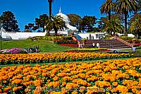 Flower beds and palm trees at Conservatory of Flowers in Golden